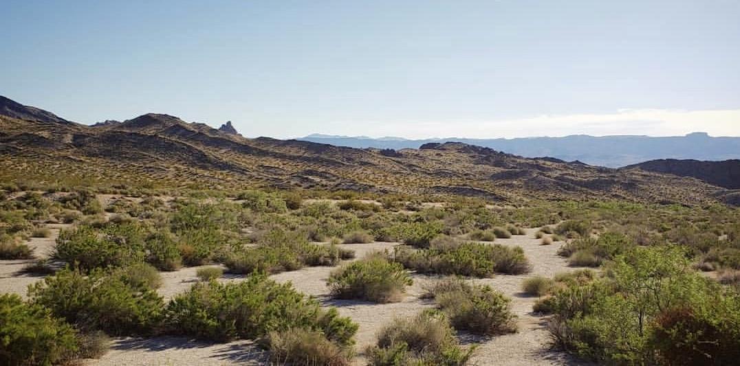 Grapevine Canyon Nevada