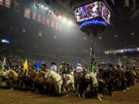 National Finals Rodeo 2019